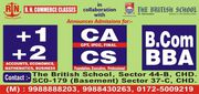 R.N. COMMERCE CLASSES (CS CLASSES)