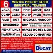 best computer course for Advanced java in ducat|ghaziabad
