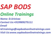 Crucial SAP BODS Training